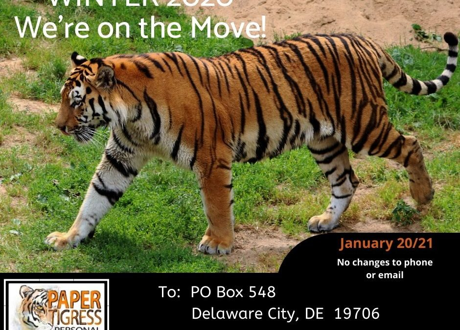 Paper Tigress is Moving!